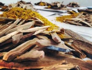 marpe_herbs